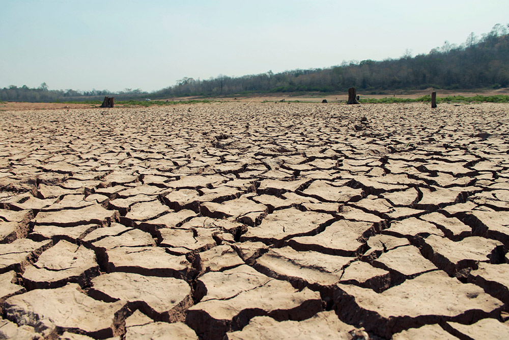 土壌の乾燥