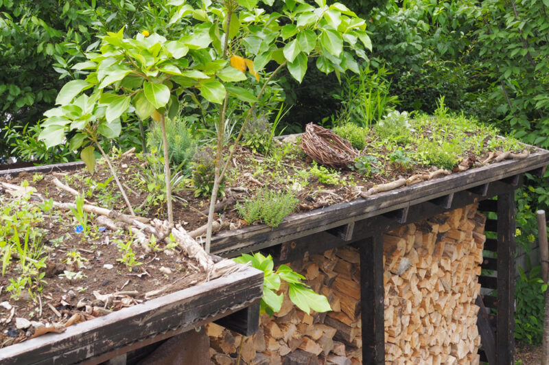 薪棚の上に草屋根を作りました〜ガーデンセラピーが体験できる「花音の森」レポvol.6