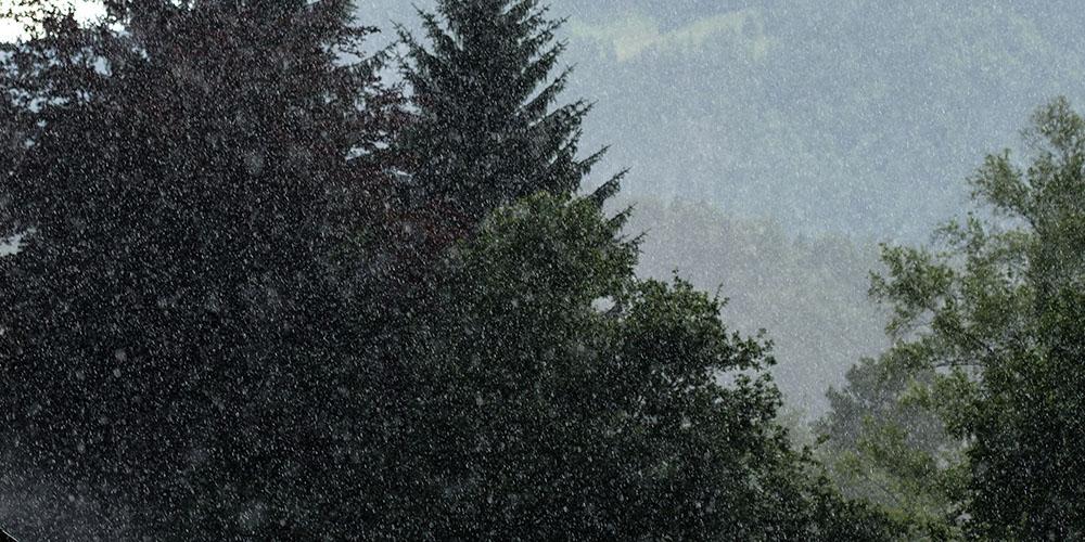 ドイツの夏の雨