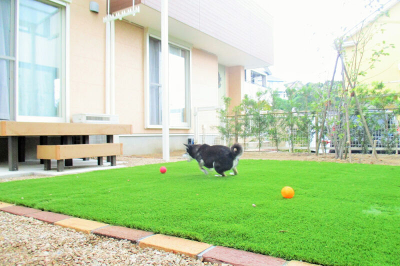 ペットと暮らす庭づくり Vol.2「犬の健康に配慮した庭」
