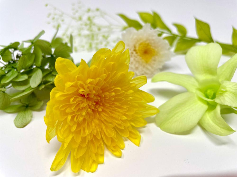 プリザーブド加工された花