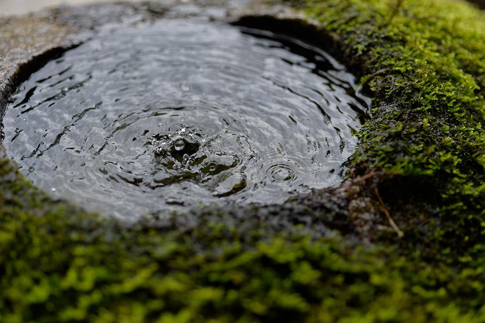 富士山麓の天然水
