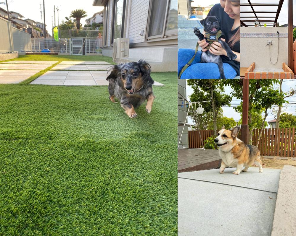ペットと暮らす庭づくりVol.3「コロナ禍だからこそ犬も人もノンストレスの環境作り」